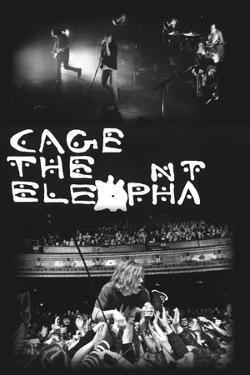 Cage The Elephant- 2 Live Pics