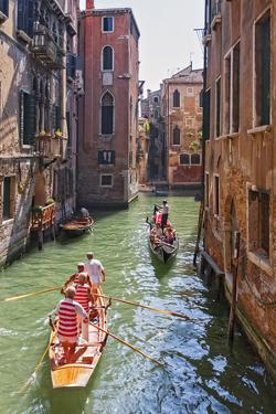 Local Gondaliers Row their Traditional Boat in One of Cannaregios Canals, Cannaregio, Venice by Cahir Davitt