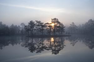 Sunrise over a Lake in Light Mist, Bergslagen, Sweden, April 2009 by Cairns