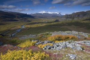 View Along Rapadalen Valley, Sarek National Park, Laponia World Heritage Site, Lapland, Sweden by Cairns