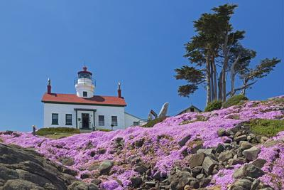 https://imgc.allpostersimages.com/img/posters/california-crescent-city-battery-point-lighthouse-ice-plants-in-full-bloom_u-L-Q1D08YT0.jpg?p=0