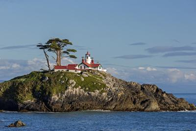 https://imgc.allpostersimages.com/img/posters/california-crescent-city-battery-point-lighthouse_u-L-Q1D07R30.jpg?p=0