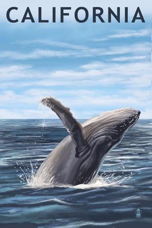 https://imgc.allpostersimages.com/img/posters/california-humpback-whale_u-L-Q1GQOSI0.jpg?p=0