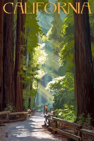 https://imgc.allpostersimages.com/img/posters/california-pathway-in-the-forest_u-L-Q1GQOS00.jpg?p=0