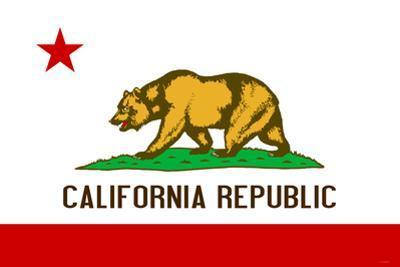 California State Flag Plastic Sign