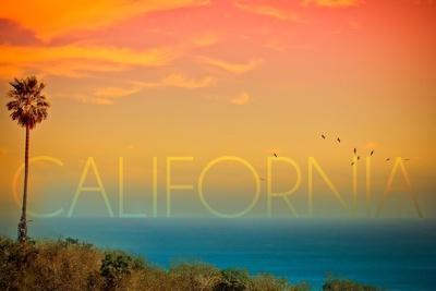 https://imgc.allpostersimages.com/img/posters/california-sunset-and-bird_u-L-Q1GQP9O0.jpg?p=0