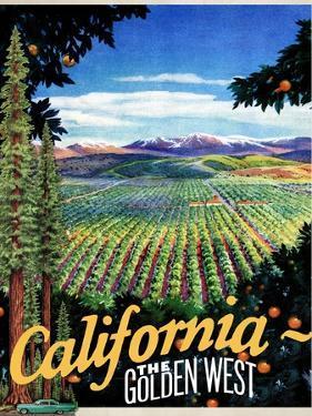 California - The Golden West
