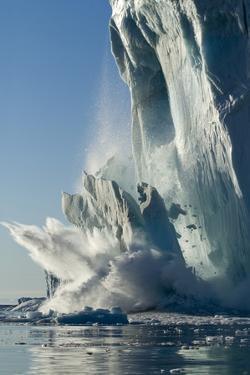 Calving Iceberg in Disko Bay in Greenland