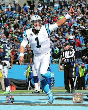 Cam Newton 2015 NFC Divisional Playoff Game