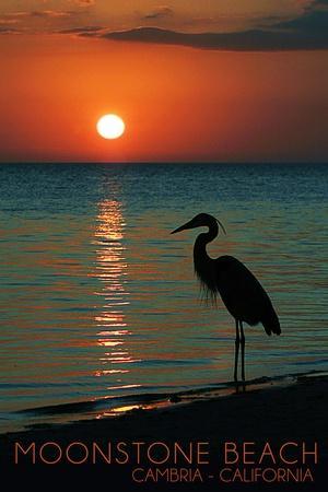https://imgc.allpostersimages.com/img/posters/cambria-california-moonstone-beach-and-heron_u-L-Q1GQMKL0.jpg?p=0