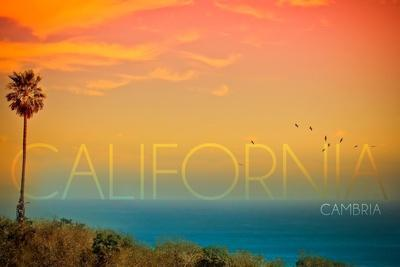 https://imgc.allpostersimages.com/img/posters/cambria-california-sunset-and-birds_u-L-Q1GQP9N0.jpg?artPerspective=n