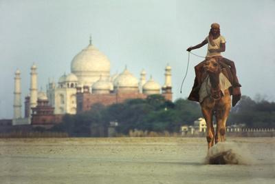 https://imgc.allpostersimages.com/img/posters/camel-and-taj-mahal_u-L-Q1AUTX80.jpg?p=0