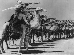 Camel Corps of the Arab Legion Practice Firing from the Saddle During World War 2