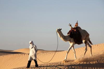 https://imgc.allpostersimages.com/img/posters/camel-driver-in-the-sahara-desert-near-douz-kebili-tunisia_u-L-Q1GYH6F0.jpg?artPerspective=n