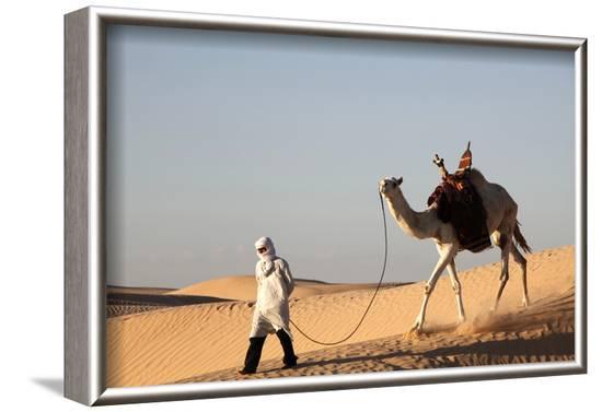 Camel driver in the Sahara desert, near Douz, Kebili, Tunisia-Godong-Framed Photographic Print