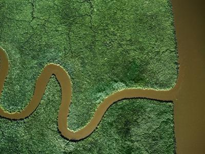 Aerial View of the Chickahominy River by Cameron Davidson