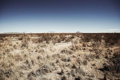 West Texas Landscape by Cameron Davidson