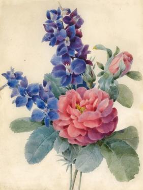 Flowers, Roses and Larkspur by Camile de Chanteraine