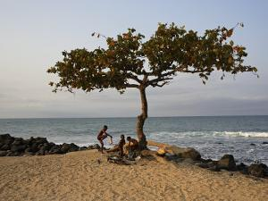 Acacia Tree on the Edge of the City of Sao Tomé, Where Young People Go to Bathe by Camilla Watson