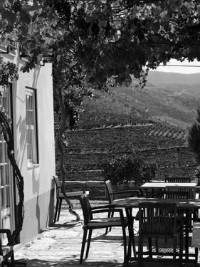 Quinta Nova De Nossa Senhora Do Carmo Estate in Northern Portugal in the Renowned Douro Valley by Camilla Watson