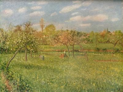 'Apple Trees at Eragny, Morning Sunshine', c1896 by Camille Pissarro