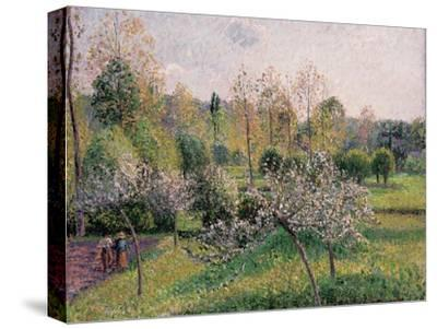 Apple Trees in Blossom, Eragny, 1895