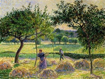 Bountiful Harvest, 1893