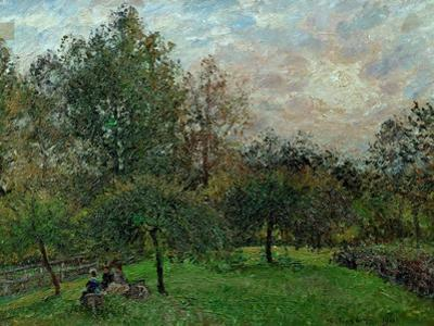 Pommiers et peupliers au soleil couchant-Apple trees and poplars in a sunset, 1901. by Camille Pissarro