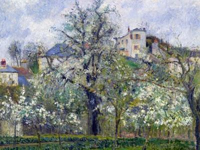 The Vegetable Garden with Trees in Blossom, Spring, Pontoise, 1877 by Camille Pissarro