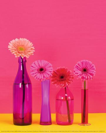 Pop Flowers by Camille Soulayrol