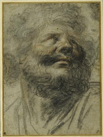 Head of a Bearded Man, Looking Up to the Right