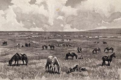 https://imgc.allpostersimages.com/img/posters/camp-in-valley-of-alkali-black-hills-south-dakota-united-states_u-L-PP133I0.jpg?p=0