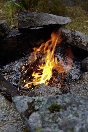 https://imgc.allpostersimages.com/img/posters/campfire-sweden_u-L-Q1EXSHM0.jpg?artPerspective=n