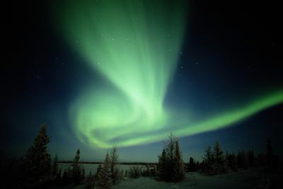 https://imgc.allpostersimages.com/img/posters/canada-manitoba-wapusk-national-park-aurora-borealis_u-L-Q10D01T0.jpg?p=0