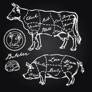 Pork and Beef Cuts - Hand Drawn Set by canicula