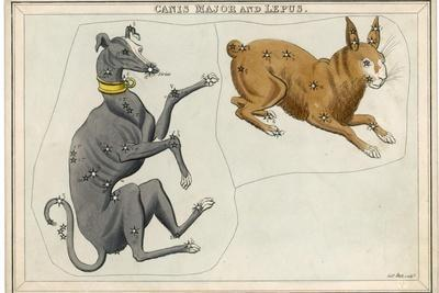 https://imgc.allpostersimages.com/img/posters/canis-major-dog-and-lepus-hare-constellation_u-L-Q1HCT7D0.jpg?artPerspective=n