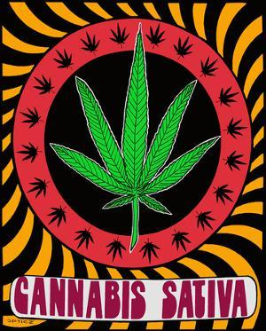 Cannabis Sativa Pot Leaf - Opticz Cloth Fabric Poster