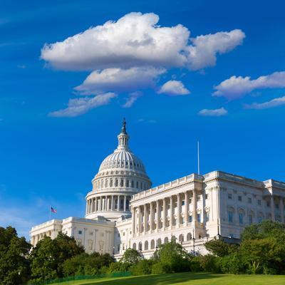 https://imgc.allpostersimages.com/img/posters/capitol-building-washington-dc-sunlight-day-usa-us-congress_u-L-Q105MDZ0.jpg?p=0