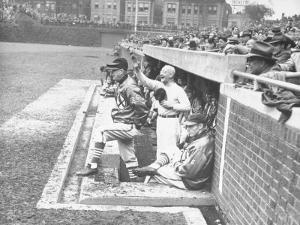 Cardinals Jeering and Waving from their Dugout to the Cubs During a Game