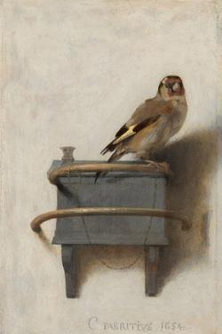 The Goldfinch, 1654 by Carel Fabritius