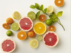Citrus Variety by Carin Krasner
