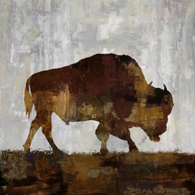 Bison by Carl Colburn