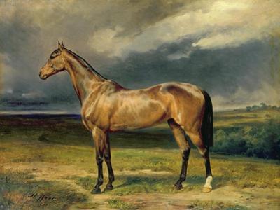 Abdul Medschid' the Chestnut Arab Horse, 1855 by Carl Constantin Steffeck