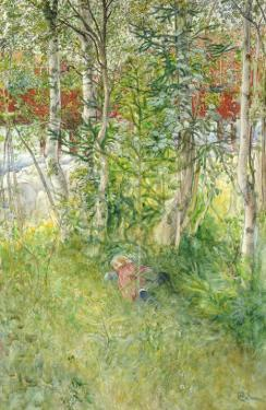 A Nap Outdoors by Carl Larsson