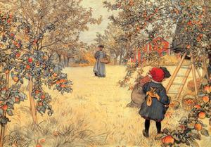 Gathering Apples, 1904 by Carl Larsson