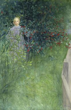 In the Rose Hip Hedge by Carl Larsson