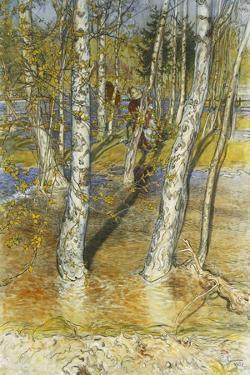 Springflood, 1902 by Carl Larsson