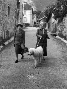 """Alice B. Toklas and Author Gertrude Stein, Walking Poodle """"Basket"""" During Liberation from Germans by Carl Mydans"""