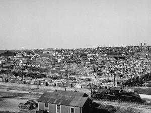 An Aerial View Showing the Fort Worth Stockyards by Carl Mydans