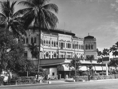 Palm Trees Surrounding the Raffles Hotel by Carl Mydans
